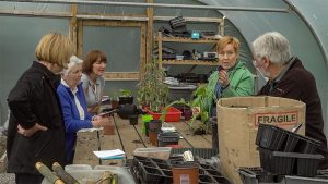 Filming at Ti Chulainn Tree Nursery